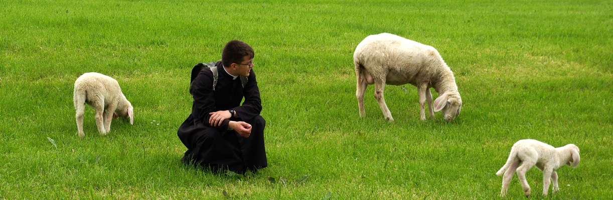 Priesterbruderschaft St. Petrus....kein Neupriestermangel.... 1